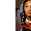 Weddings : 61 galleries with 12693 photos